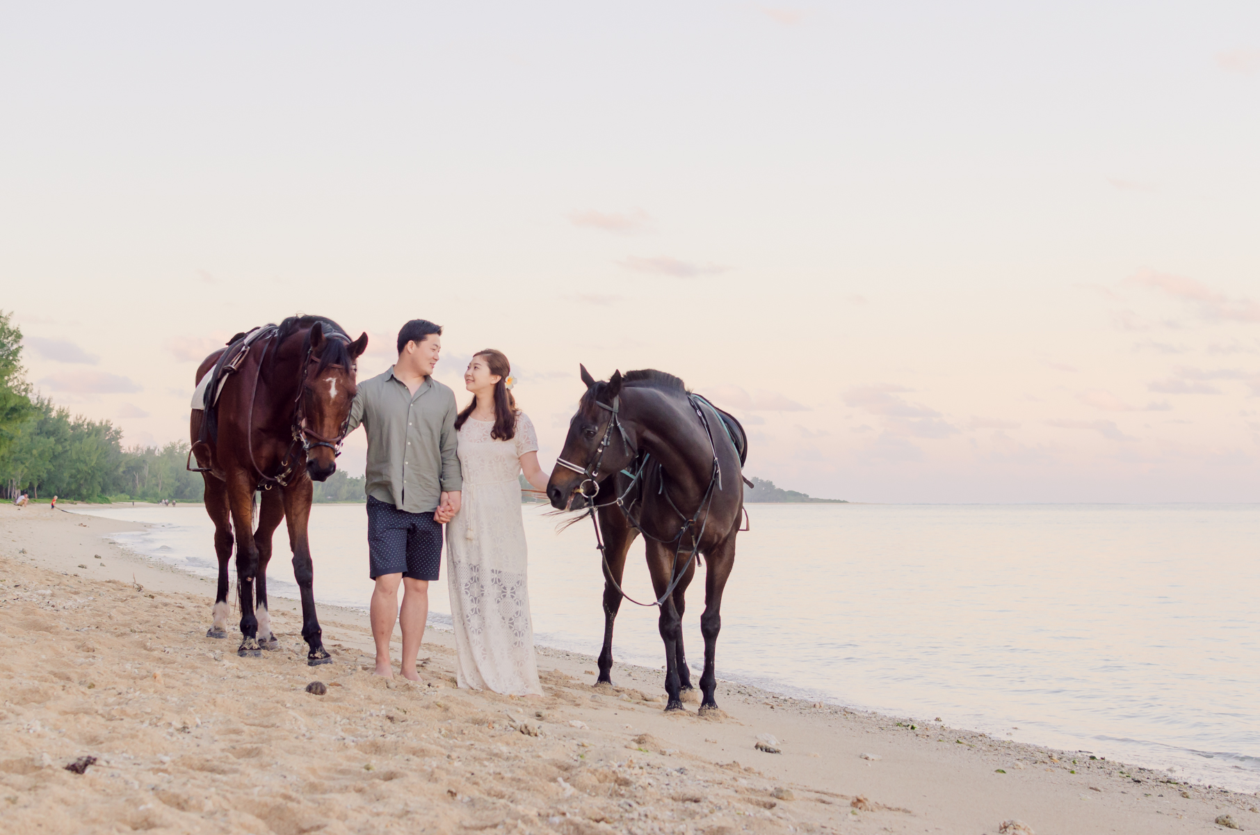 horses on the beach in Mauritius